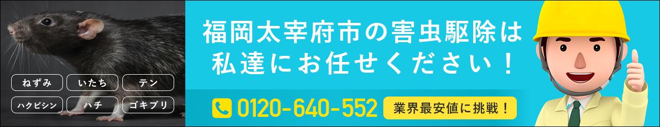 福岡県 太宰府市のシロアリ・イタチ・ハチの駆除は私たちにおまかせください!