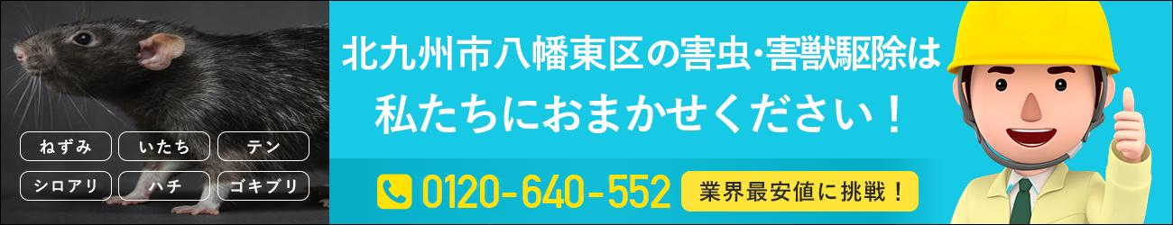 福岡県 北九州市八幡東区のシロアリ・イタチ・ハチの駆除は私たちにおまかせください!