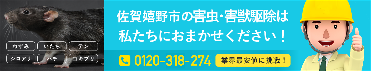 佐賀県 嬉野市のシロアリ・イタチ・ハチの駆除は私たちにおまかせください!