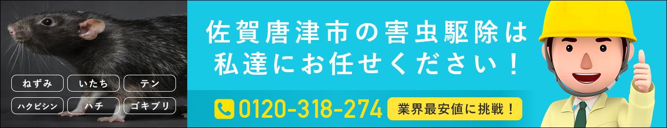 佐賀県 唐津市のシロアリ・イタチ・ハチの駆除は私たちにおまかせください!